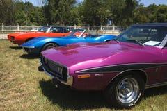 Amerykańscy samochody w samochodu rynku fotografia royalty free