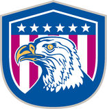 Amerykańska Łysego Eagle głowy strona Gra główna rolę Retro Fotografia Stock