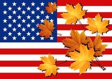 amerykańska flaga państwa bandery zjednoczonej ameryki Obraz Stock