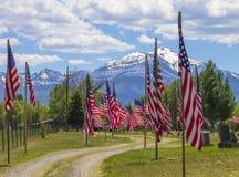 amerykańska flaga rządów Zdjęcie Stock