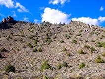 Amerykańska Południowo-zachodni Arizona pustynia i góra krajobraz na su Zdjęcie Royalty Free