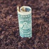 Amerykański dolar r od ziemi 3 d pojęcia pojedynczy utylizacji inwestycji Zdjęcie Royalty Free