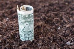 Amerykański dolar r od ziemi 3 d pojęcia pojedynczy utylizacji inwestycji Obrazy Stock