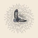 amerykański duch Rocznik projektująca wektorowa ilustracja orzeł Obrazy Stock