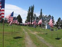 amerykański flagę Obraz Royalty Free
