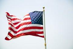 Amerykański usa flaga latanie w Wiatrowym Białym tle Obraz Stock