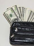 100 Amerykańskich dolarów obrazków w torbie, dolarów obrazki w pieniądze portflu, Obrazy Royalty Free