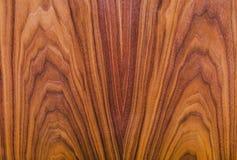 Amerykańskiego orzecha włoskiego naturalna drewniana tekstura fotografia royalty free