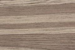 Amerykańskiego orzecha włoskiego projekta drewniana tekstura Naturalnego tła zbliżenie obrazy stock