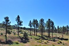 Amerykańskiej legii poczta 86 wolności zgromadzenia przejażdżki fundusz - hodowca w Północnym Arizona, Stany Zjednoczone obraz stock
