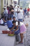 AMERYKA ŁACIŃSKA HONDURAS COPAN Zdjęcia Royalty Free