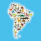 Ameryka Południowa opieszałości anteater pieprzojada lama nietoperza futerkowej foki armadyla boa manata małpy delfinu Grzywiaste Obraz Stock