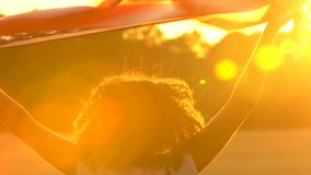 Amerykanin Afrykańskiego Pochodzenia dziewczyny nastolatka żeńska młoda kobieta trzyma amerykanin USA lampasy i gwiazdy zaznacza zbiory wideo