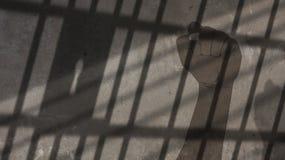 Amerykanin Afrykańskiego Pochodzenia mężczyzna Podnosząca pięść Pod więzienie barów cieniem Obraz Royalty Free