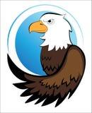 Amerykanin Eagle Zdjęcie Royalty Free