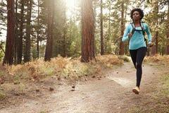 Amerykanina Afrykańskiego Pochodzenia pochodzenia etnicznego kobiety bieg w lesie Zdjęcie Stock