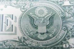 Amerykanina Eagle portret Zdjęcie Stock
