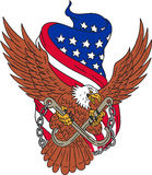 Amerykanina Eagle skrzydeł usa flaga rysunek Fotografia Royalty Free