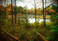 Ames wzgórza staw w Wczesnej jesieni Zdjęcia Royalty Free