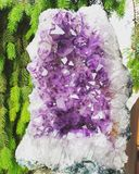 Amethyst crystal geode royalty free stock images