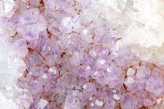 Amethyst crystals Stock Image