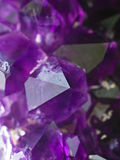 Amethyst druse Royalty Free Stock Image