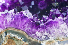 Amethyst druse Royalty Free Stock Photo