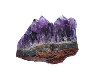 Amethyst druse Stock Photography
