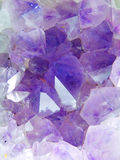 Amethyst druse detail Royalty Free Stock Image