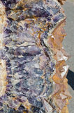 Amethyst druse Stock Images