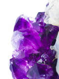 Amethyst druse on white Royalty Free Stock Image