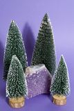 Amethyst in a firs forest Stock Image