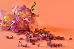 Amethyst and freesias Stock Photography