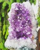 Amethystkristalldruse lizenzfreie stockbilder