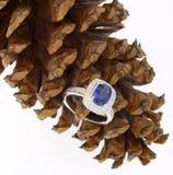 Ametista ed anello di diamante Immagine Stock