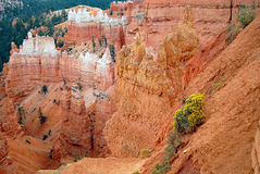Amfiteater av olycksbringare på Bryce Canyon National Park Arkivbild
