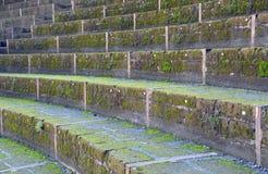 Amfiteater av Pompeii, den romerska staden Arkivbilder