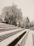 Amfiteatr ławki zakrywać z śniegiem fotografia royalty free