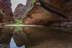 Amfiteatr, Catherdral wąwóz, Purnululu park narodowy Obrazy Royalty Free