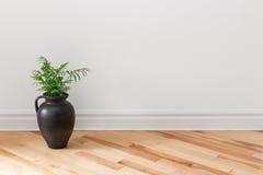 Amfora met groene installatie die een ruimte verfraaien Stock Foto