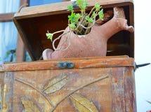 Amfora in terracotta die als bloempot dienen Royalty-vrije Stock Foto