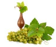 amfory grona groszaka winogrona zielenieją dojrzałego Obraz Stock