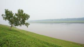 Amga flod Royaltyfria Bilder