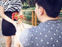 Ami asiatique offrant à son amie par groupe de roses en parc Photos stock