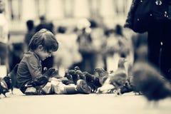 Ami d'enfant en bas âge avec les pigeons Images libres de droits
