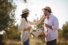 Ami de alimentation de jeune femme heureuse à la ferme Photographie stock libre de droits