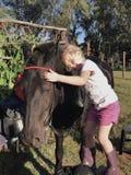 Ami de cheval Photographie stock libre de droits