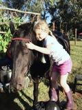 Ami de cheval Photos libres de droits