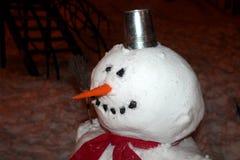 Ami de l'hiver Photos stock