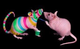 Ami de peinture de rat Image libre de droits